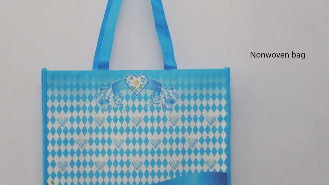 PP Laminated Non Woen Shopping Bag