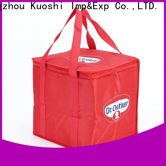 wholesale bag with cooler cooler factory for picnic